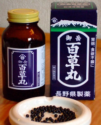 Hyakusogan