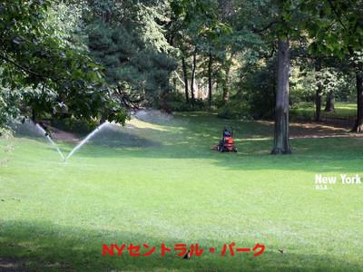 Ny_centralpark